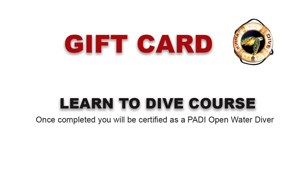 LEARN TO DIVE GIFT CARD