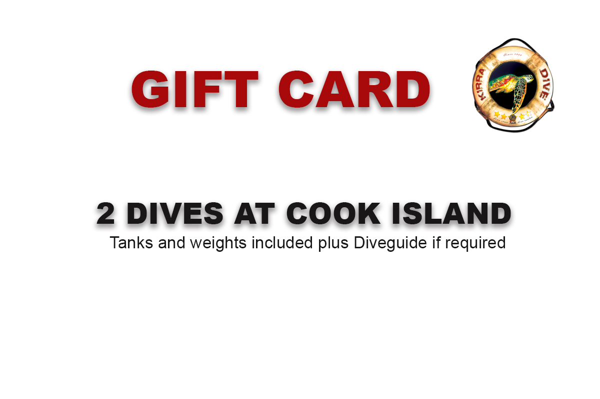 DOUBLE BOAT DIVE TANKS AND WEIGHTS INC