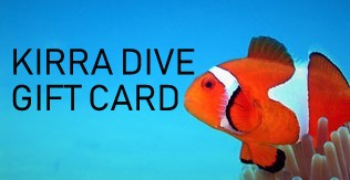 Double Boat Dive All Hire Gear $169