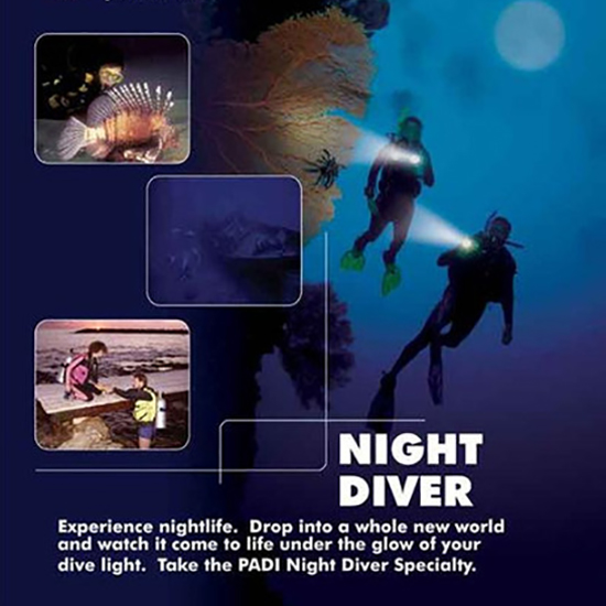 NIGHT DIVER SPECIALTY