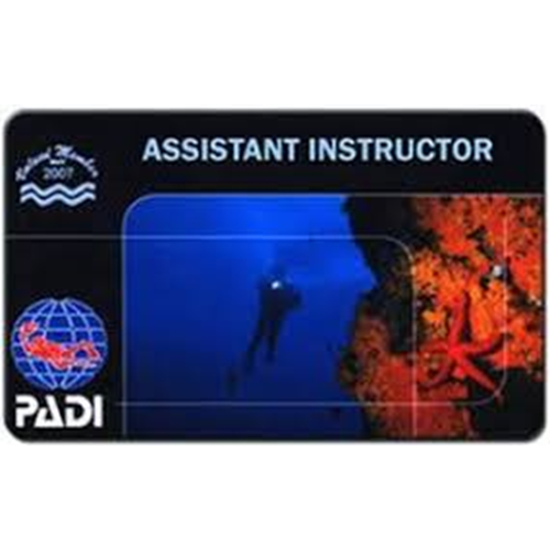 Assistant Instructor (Contact Store)
