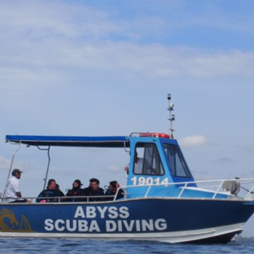 Local Boat Dive