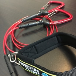 Evolution 4 Lanyard