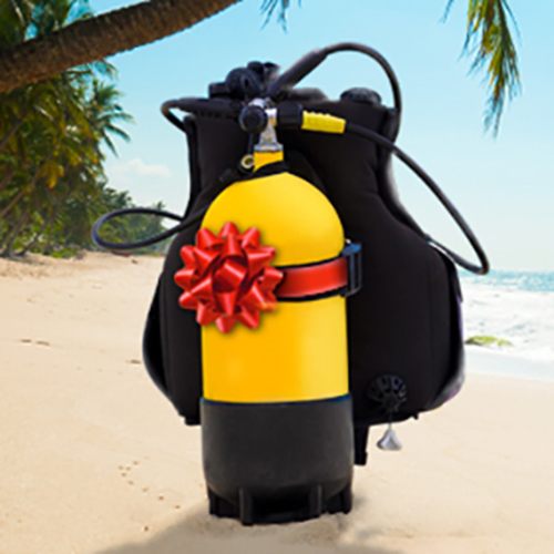 Learn to Dive - Gift Certificate
